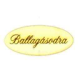 Ballagasodra-tabla-nagy-hobbykreativ
