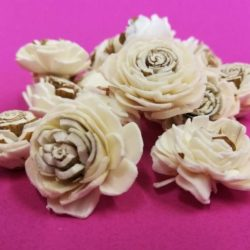 ming-rozsa-mini-feher-barna-25-mm-hobbykreativ