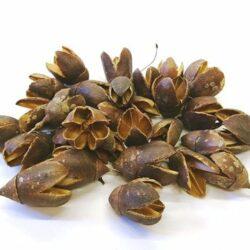 bakuli-barna-natur-70-gr-hobbykreativ