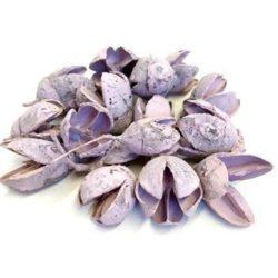 bakuli-pasztell-lila-50-gr-hobbykreativ