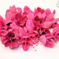 bakuli-pink-50-gr-hobbykreativ
