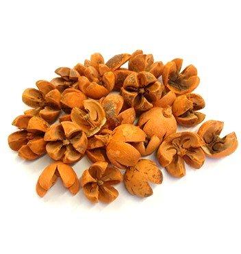 csillagrozsa-narancs-hobbykreativ