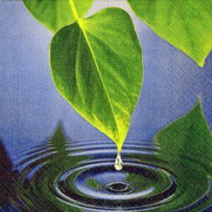 dekorszalvéta-levél a víznél 4db