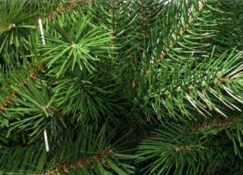 green-flame-kfb-575-578-571-574-2-hobbykreativ