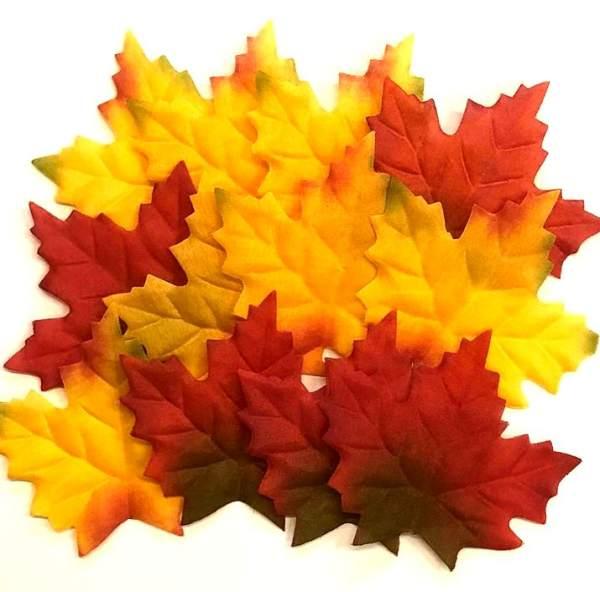 10 Juharfa a legjobb őszi színért