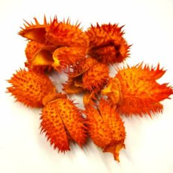 belendek-narancs-8-gr