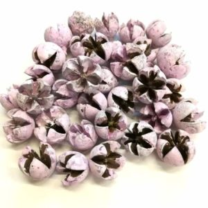 Csillagrózsa pasztell rózsaszín 45 gr