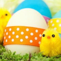 Húsvét és tavasz