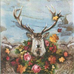 dekorszalveta-albert