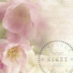 dekorszalveta-apple-flower-hobbykreativ