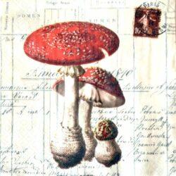 szalveta-gombas-hobbykreativ