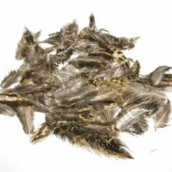 madartoll-barna-csikos-hobbykreativ