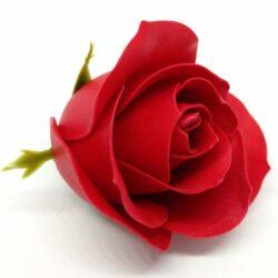 illatos-rozsa-piros-hobbykreativ