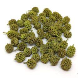 casuarina-szaritott-termes-oliva-zold-hobbykreativ