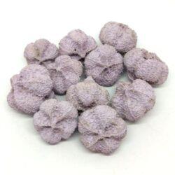 fokhagyma-termes-pasztell-lila-hobbykreativ
