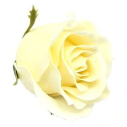 illatos-rozsa-vajszinu-hobbykreativ