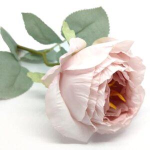 Hamvas levelű selyem bazsarózsa szál mályvás-rózsaszín