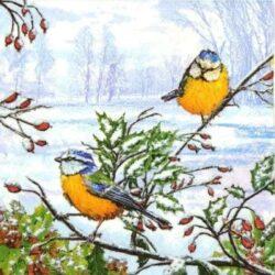 dekorszalveta-szencinegek-havas-csipkebogyo-agon-hobbykreativ