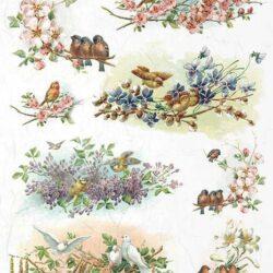 cseresznyevirag-madarkak-rizspapir-r1070-hobbykreativ