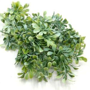 Vastagágú ovális levelű díszítőelem hamvas zöld 4 ágas
