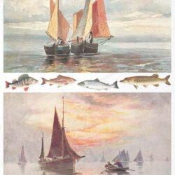 hajo-tengeren-rizspapir-r1040-hobbykreativ