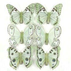 csipeszes-pillango-pasztell-zold-6-db-hobbykreativ