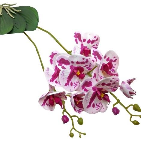 elethu-latex-orchidea-levellel-ciklamen-ekru-foltos-hobbykreativ