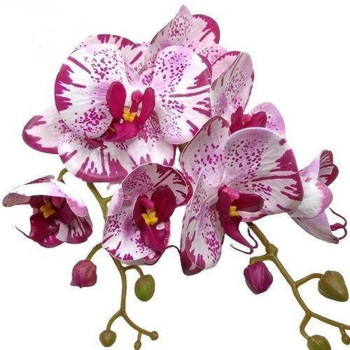 elethu-latex-orchidea-levellel-ciklamen-ekru-pottyos-1-hobbykreativ