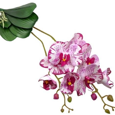 elethu-latex-orchidea-levellel-ciklamen-ekru-pottyos-hobbykreativ