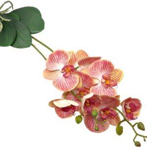 Élethű latex orchidea levéllel korall-sárga erezetes 2 szálas
