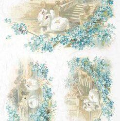 hatyu-madar-akvarell-rizspapir-r0974-hobbykreativ
