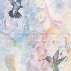 kolibri-madarak-rizspapir-r0566-hobbykreativ