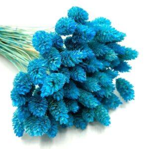 Buzogányfű csokor kék