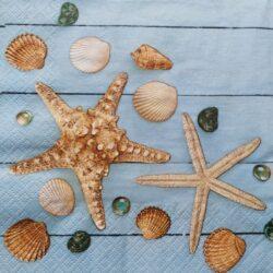 dekorszalveta-kagylok-es-tengeri-csillagok-hobbykreativ