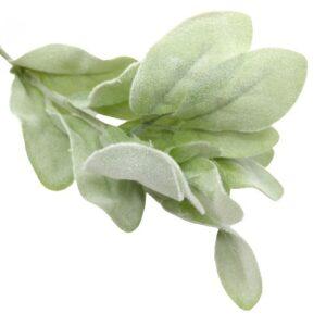 Nyuszifül hamvas zöld díszítőelem